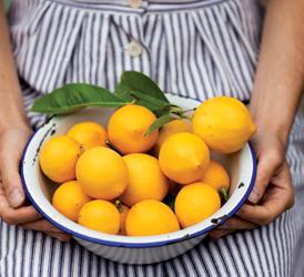 Lemon_marmalade1